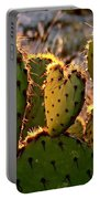 Cactus Heart In Sunset Portable Battery Charger