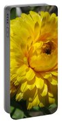 Calendula Named Bon-bon Yellow Portable Battery Charger