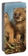 Canadian Lynx Kittens, Alaska Portable Battery Charger