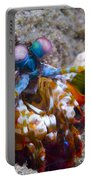 Close-up View Of A Mantis Shrimp, Papua Portable Battery Charger
