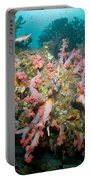 Colorful Reef Scene, Komodo, Indonesia Portable Battery Charger