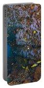 Colourful Reef Scene, Ari And Male Portable Battery Charger
