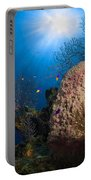 Coral And Sponge Reef, Belize Portable Battery Charger