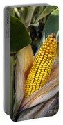 Corn Cob Portable Battery Charger