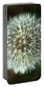 Dandelion Seed Head Portable Battery Charger