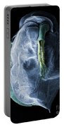 Daphnia Magna, Sem Portable Battery Charger