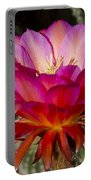 Dark Pink Cactus Flower Portable Battery Charger