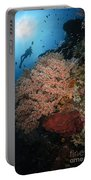 Diver Over Soft Coral Seascape Portable Battery Charger