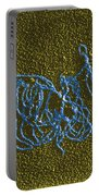 Dna And E. Coli Rna Polymerase Reaction Portable Battery Charger