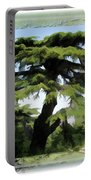 Do-00512 Cedar Forest Portable Battery Charger
