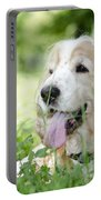 Dog On The Green Grass Portable Battery Charger