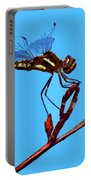 Dragonfly Art Portable Battery Charger