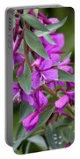 Dwarf Fireweed Portable Battery Charger