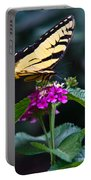 Eastern Tiger Swallowtail 3 Portable Battery Charger