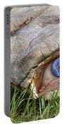 Eye Of A Dinosaur Lightning Portable Battery Charger