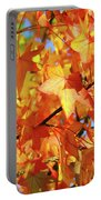 Fall Colors Portable Battery Charger by Carlos Caetano