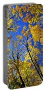 Fall Maple Trees Portable Battery Charger