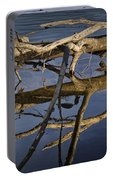 Fallen Tree Trunk With Reflections On The Muskegon River Portable Battery Charger