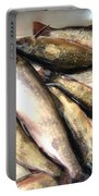 Fine Catch Of Trout Portable Battery Charger