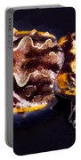 Flamboyant Cuttlefish Portable Battery Charger