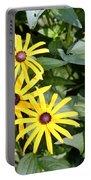 Flower Rudbeckia Fulgida In Full Portable Battery Charger