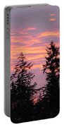 Frosted Morning Silhouette Portable Battery Charger