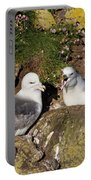 Fulmar Pair Bonding Portable Battery Charger