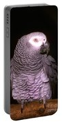 Gray Parrot Portable Battery Charger