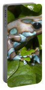 Green And Black Poison Frog Portable Battery Charger