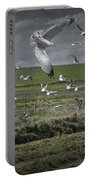 Gull Chased Tractor Portable Battery Charger