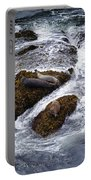 Harbor Seals Portable Battery Charger