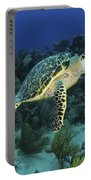 Hawksbill Turtle On Caribbean Reef Portable Battery Charger