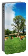 Hereford Bullocks Portable Battery Charger
