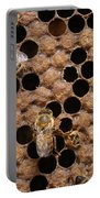 Honey Bees Portable Battery Charger