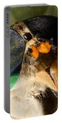 Horse Fly Portable Battery Charger