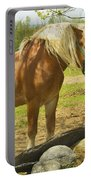 Horse Near Strone Wall In Field Spring Maine Portable Battery Charger