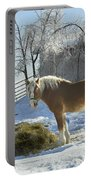 Horse On Maine Farm After Snow And Ice Storm Portable Battery Charger