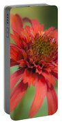 Hot Papaya Coneflower Squared Portable Battery Charger
