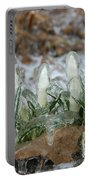 Ice-coated Crocuses Portable Battery Charger