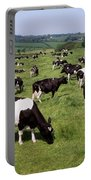 Ireland Friesian Cattle Portable Battery Charger