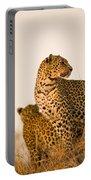 Leopard Panthera Pardus, Arathusa Portable Battery Charger