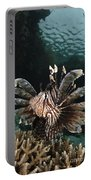 Lionfish, Indonesia Portable Battery Charger