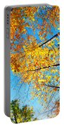 Looking Up At All The Colors Portable Battery Charger