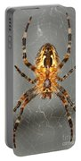 Marbled Orb Weaver Spider Portable Battery Charger