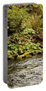 Mossy Riverbank Portable Battery Charger