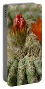 Orange Cactus Flower Portable Battery Charger