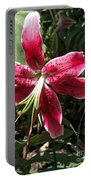 Orienpet Lily Named Scarlet Delight Portable Battery Charger