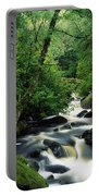 Owengarriff River, Killarney National Portable Battery Charger