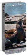 Pier 39 San Francisco Portable Battery Charger
