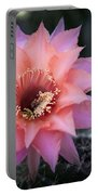 Pink Echinopsis Portable Battery Charger